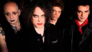 THE CURE,THE SNAKEPIT
