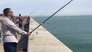 Fishing in Dover Port