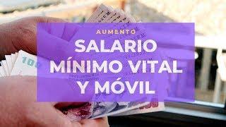 Aumenta El Salario Mínimo Vital Y Móvil Un 35%