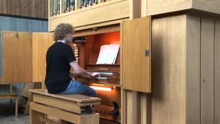 Herz schlägt auch im Eis (Rosenstolz) Instrumental Orgel