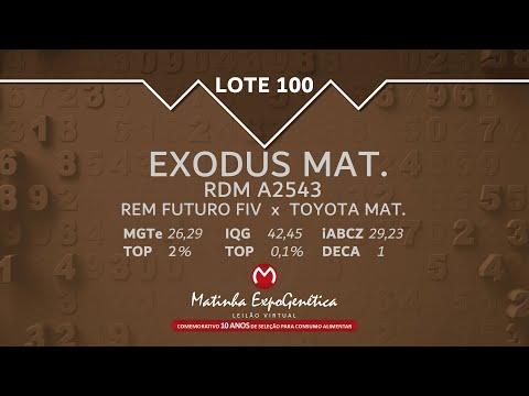 LOTE 100 MATINHA EXPOGENÉTICA 2021