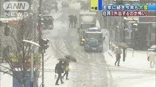 「外出するのが怖い」雪の勢い増す八王子から中継(14/02/08) thumbnail