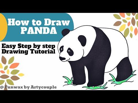 how-to-draw-panda-bear-|-easy-panda-drawing-tutorial-for-kids-|-panda-sketch