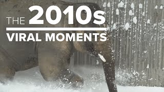 The 2010s: Top viral moments in Oregon