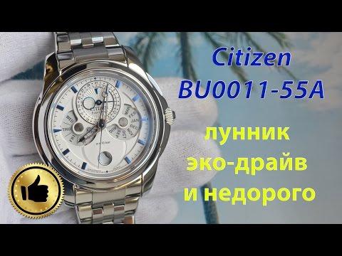 Недорогой лунник или Citizen Eco-Drive Moon Phase BU0011-55A
