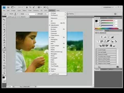 compra Understanding Adobe Photoshop CS4