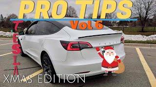Tesla Model 3 - PRO TIPS Vol.6 - Long Edition :(