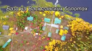 Окунь 1,5кг. Рыбалка на вертолетах, таёжные озёра Томской области