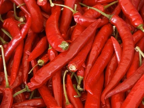 10 Hottest Chilies