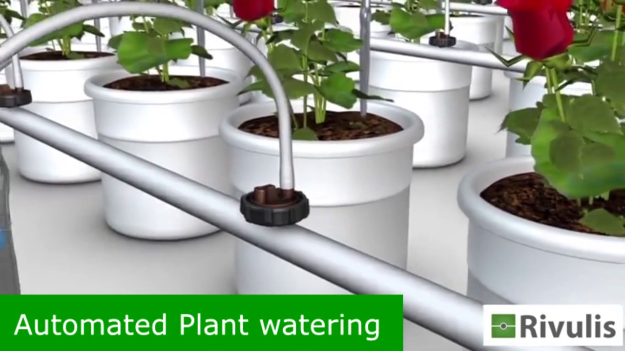 Rivulis- Rivulite Aqua, Bluetooth Enabled Automated Plant Watering System  for Home Garden