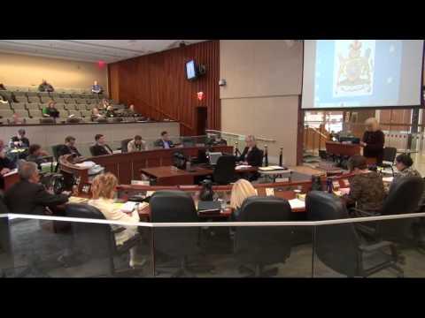 Hamilton City Council Budget 2015: Public Delegations