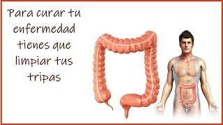 Para curar tu enfermedad tienes que limpiar tus tripas por Nely Helena Acosta Carrillo