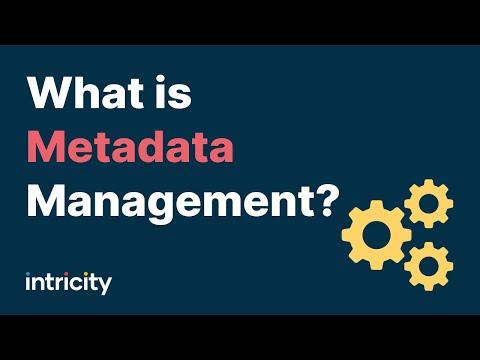 What is Metadata Management?