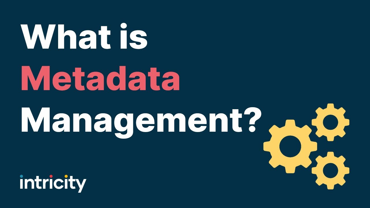 What is Metadata Management? - YouTube