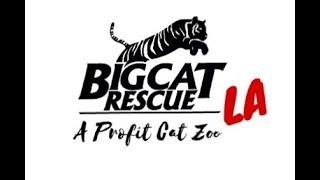 Big Cat Rescue LA - Ep 104