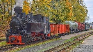 Parní lokomotiva U46.001 (Resita) - Vlak Rumunských drah na JHMD