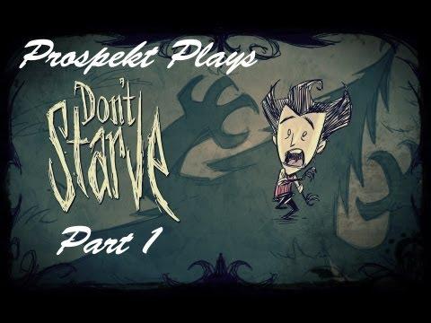 Don't Starve - Part 1 - Bester Chester