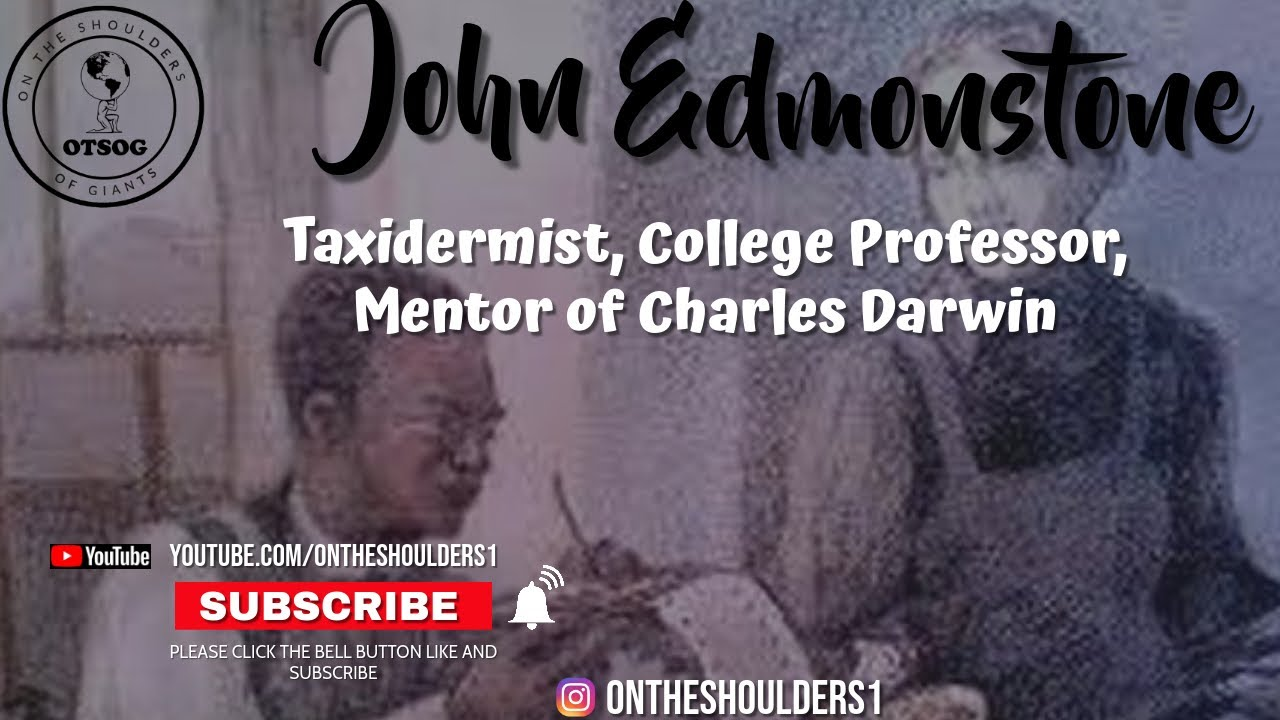 The Black Man Who Mentored Charles Darwin | John Edmonstone