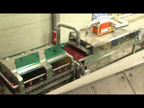 냉동고추건조라인 홍보 동영상 -(주)지엠아이 Frozen Chilli Drying(Dehydrating) Process - GMI Co., Ltd. Korea