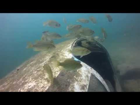 Terry O'Donnell Kiss 102.3 - WATCH: Look What They Found SCUBA Diving In Lake George