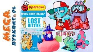 Lost Kitties  Zabawki niespodzianki z Biedronki  Hasbro E4459