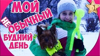 Мой будний день / Один день из моей жизни. Моё утро. Гуляю с собакой 🐶 лепим снежки. Иду на концерт