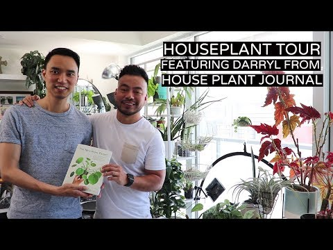 Houseplant Tour | Featuring Darryl From House Plant Journal