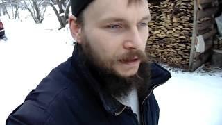как прошел вечер 18 ноября. Уборка снега. Обзор скота, игра с собакой