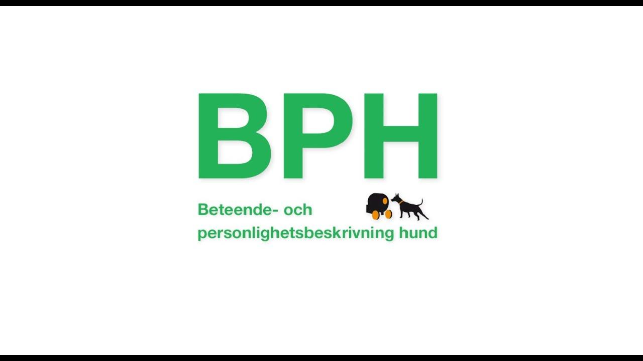 Filmen om BPH