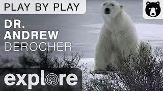 Dr. Andrew Derocher Polar Bears International - Play By Play thumbnail