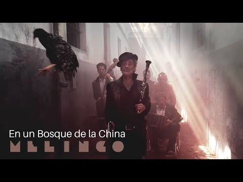 melingo---en-un-bosque-de-la-china-[official-music-video]