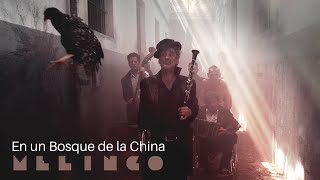 Melingo - En un Bosque de la China [Official Music Video]