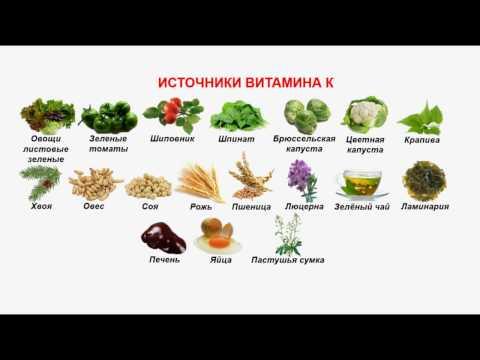 Витамин К - функции, потребность, в каких продуктах содержится