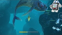 HUNGRY SHARK WORLD #1 App für Android & iOS - HUNGRIGE HAIE - Spiel mit mir Kanal