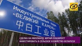 Сделка на миллиард  Китай планирует инвестировать в сельское хозяйство Беларуси