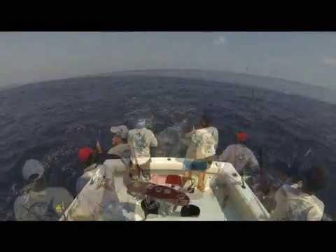 Cayman Team Offshore World Championships 2013