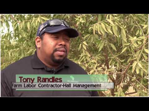 Grower & Farm Labor Contractor Hall Management Recommends Datatech