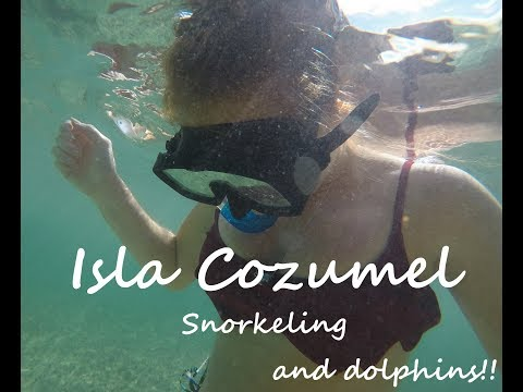 A day in... Isla Cozumel // Mother in law TAG!!!