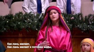 Рождественская сценка. Церковь Суламита.(Рождественская сценка. 18 Декабря 2016. Пожертвования/Donations: ..., 2016-12-19T03:54:51.000Z)
