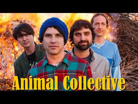 Animal Collective - The Best of Animal Collective [Full Album]