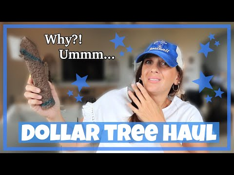 HUGE DOLLAR TREE HAUL **BRAND NEW** $65.00+ DOLLAR HAUL!