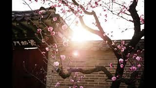 In Yong La (나인용) - Four Seasons / v-2 Spring Delight (사계 / 새 봄의 환희)