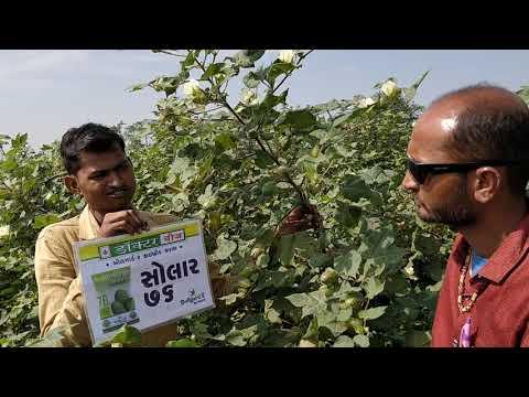 SOLAR 76 BGII - Farmer: Nitinkumar, Jilana, JND, GJ