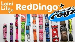 Обзор ошейников Red Dingo и сравнение с ROGZ