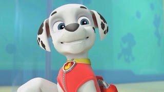 мультик щенячий патруль на русском  игра онлайн Щенки спасают черепашек #pawpatrol #kidsgame