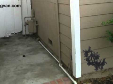 5 Spots Mold Can Grow Outside Your House Maintenance Tips