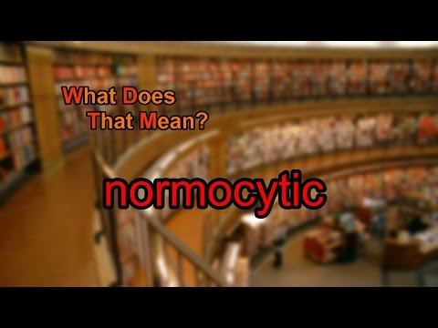 What does normocytic mean?