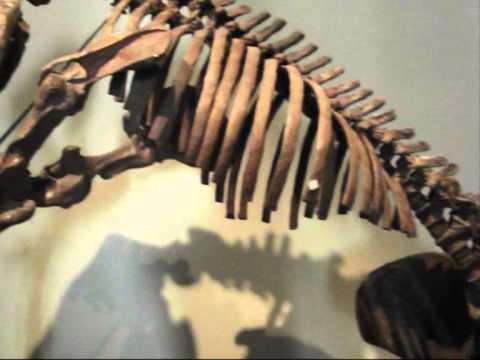 splintersaurus prehistoric art