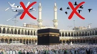 চাক্ষুস প্রমানঃ পবিত্র কাবা শরীফের উপর দিয়ে কোন বিমান ও পাখি উড়তে পারেনা | Saudi Arabia News