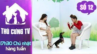 Kaylee và chú chó Lạp Xưởng tİnh nghịch | YOUTV